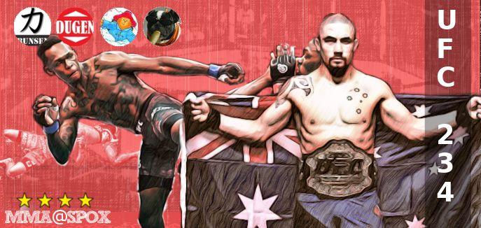 Banner für UFC 234