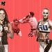 Banner für UFC 213